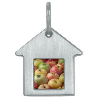 Manzanas - maduras y coloridas placa para mascotas