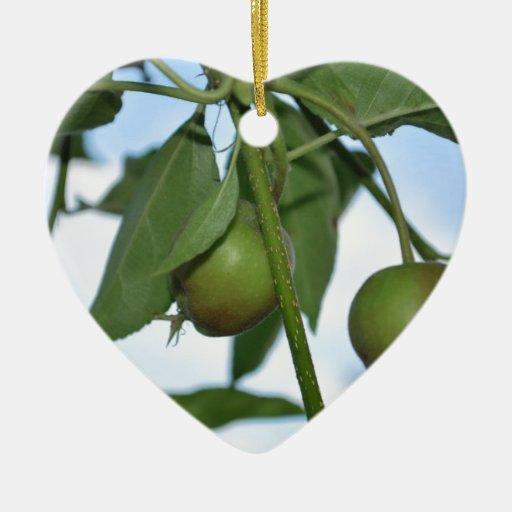 Manzanas verdes adornos