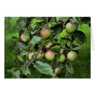 Manzanas verdes en un jardín sobre Brienz Tarjeta