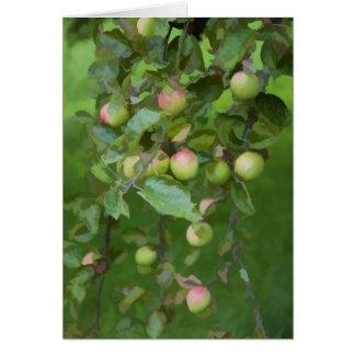 Manzanas verdes en una huerta suiza bonita del jar felicitación