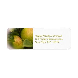 Manzanas verdes frescas con una frontera brumosa etiqueta de remitente