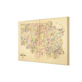 Mapa 2 de las tierras 3 de la madera impresión en lienzo estirada