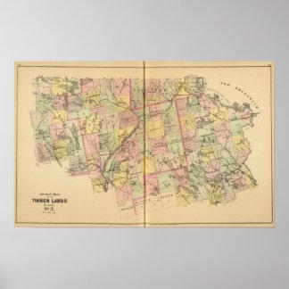 Mapa 2 de las tierras 3 de la madera póster