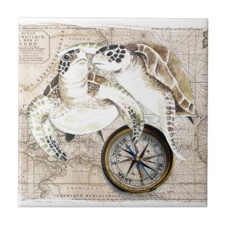 Mapa de compás de las tortugas de mar azulejo