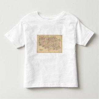Mapa de las tierras 3 de la madera camiseta de bebé