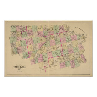 Mapa de las tierras 3 de la madera póster