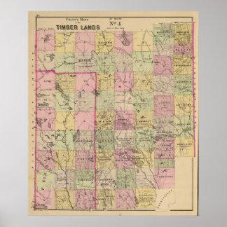 Mapa de las tierras 4 de la madera póster