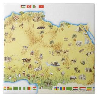 Mapa de Suráfrica 2 Azulejo Cuadrado Grande