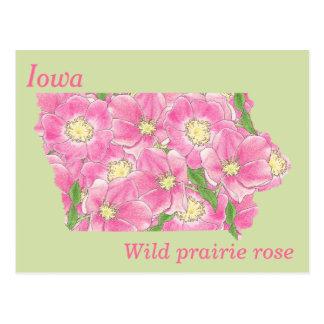 Mapa del collage de la flor de estado de Iowa Postal