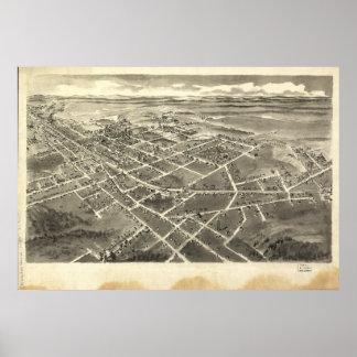Mapa panorámico antiguo de la nuez dura N. Carolin Posters
