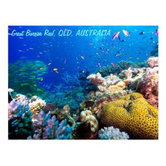 Mar de coral tropical de la gran barrera de coral postal
