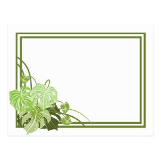 Marco de la planta tropical postal