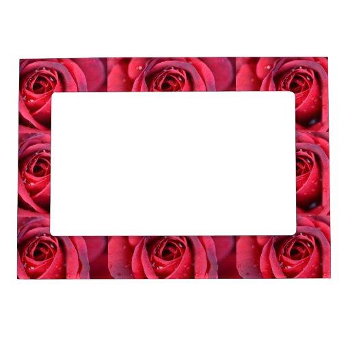 Marco magnético de los rosas rojos de RomanceMe Marcos Magneticos