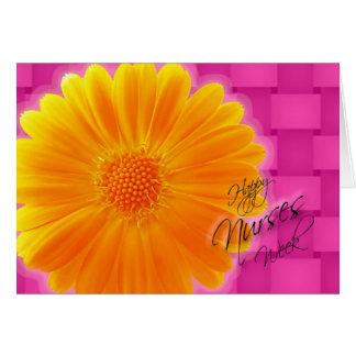 Margarita anaranjada del Gerbera de la semana de Tarjeta