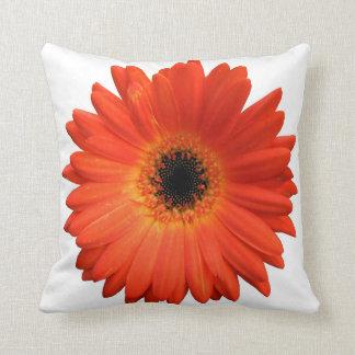 Margarita anaranjada hermosa del Gerbera Cojín Decorativo