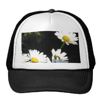 Margarita blanca gorras de camionero