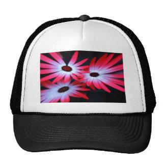 Margarita de neón rosada gorras de camionero