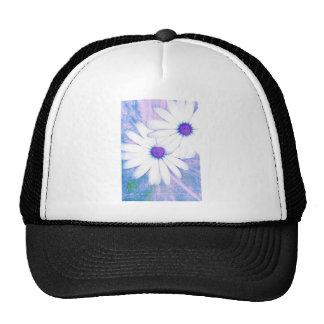 margarita nebulosa gorras