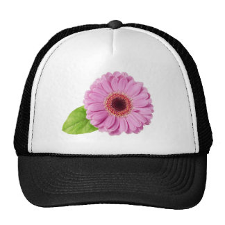 Margarita rosada gorras