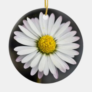 Margarita salvaje blanca y amarilla adorno de cerámica