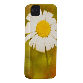 margarita y el verano solo iPhone 4 protectores