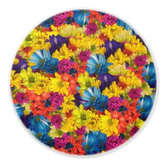 Margaritas del arco iris pomo de cerámica