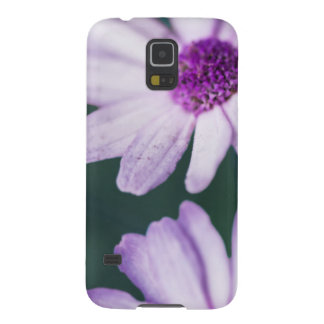 Margaritas púrpuras carcasa galaxy s5