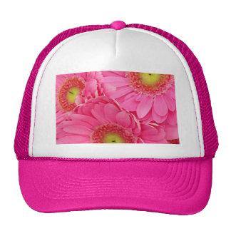Margaritas rosadas de Gerber Gorra
