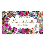 Marie Antonieta en tarjetas de visita del ~ de las