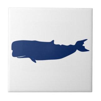 Marina de guerra de la ballena azulejo
