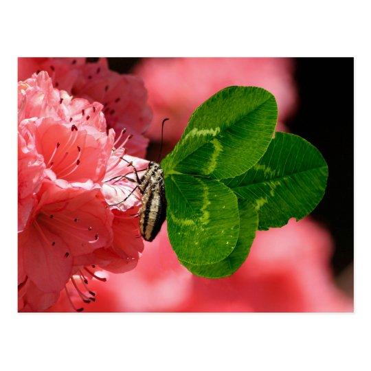 Mariposa afortunada postal