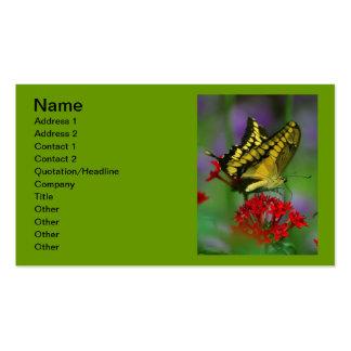 Mariposa amarilla de Swallowtail del tigre Tarjetas De Visita