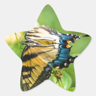 Mariposa amarilla hermosa pegatina en forma de estrella