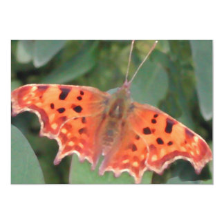 Mariposa anaranjada brillante. Coma Invitacion Personal