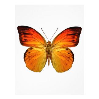 Mariposa anaranjada brillante tarjetas publicitarias