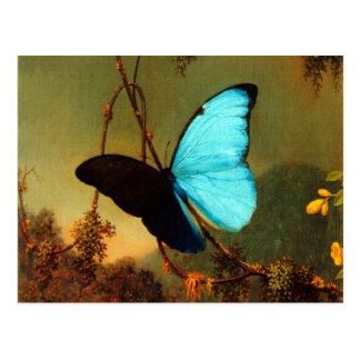 Mariposa azul de Martin Johnson Heade Morpho Postal