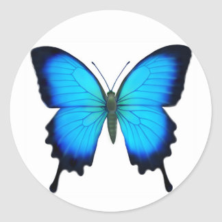 Mariposa azul de Papilio Ulises Pegatinas Redondas