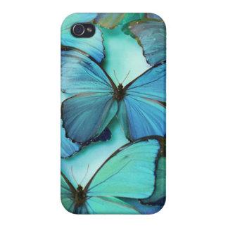 Mariposa azul iPhone 4 carcasas