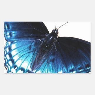 Mariposa azul hermosa pegatina rectangular