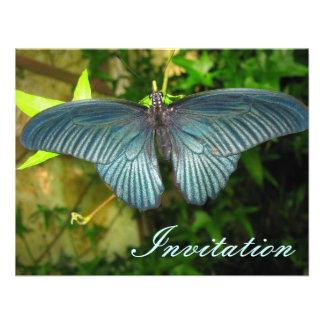 Mariposa azul anuncios personalizados