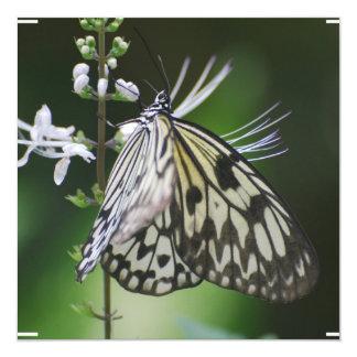 Mariposa blanca y negra de Polinating Invitación Personalizada