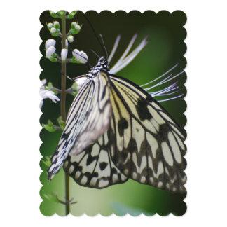 Mariposa blanca y negra de Polinating Invitación 12,7 X 17,8 Cm
