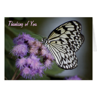Mariposa blanco y negro de la ninfa que piensa en  tarjeta