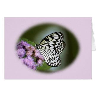 Mariposa blanco y negro de la ninfa tarjeta de felicitación