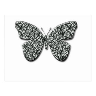 Mariposa blanco y negro elegante postal