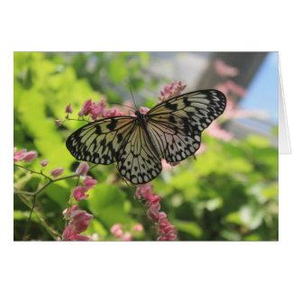 Mariposa blanco y negro en la flor rosada tarjeta de felicitación