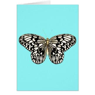 Mariposa blanco y negro, fondo de la turquesa tarjeta pequeña