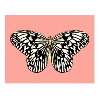Mariposa blanco y negro, fondo rosado coralino postales