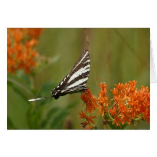 Mariposa blanco y negro tarjeta de felicitación