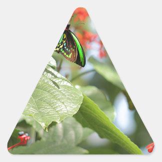 Mariposa colorida pegatina triangular